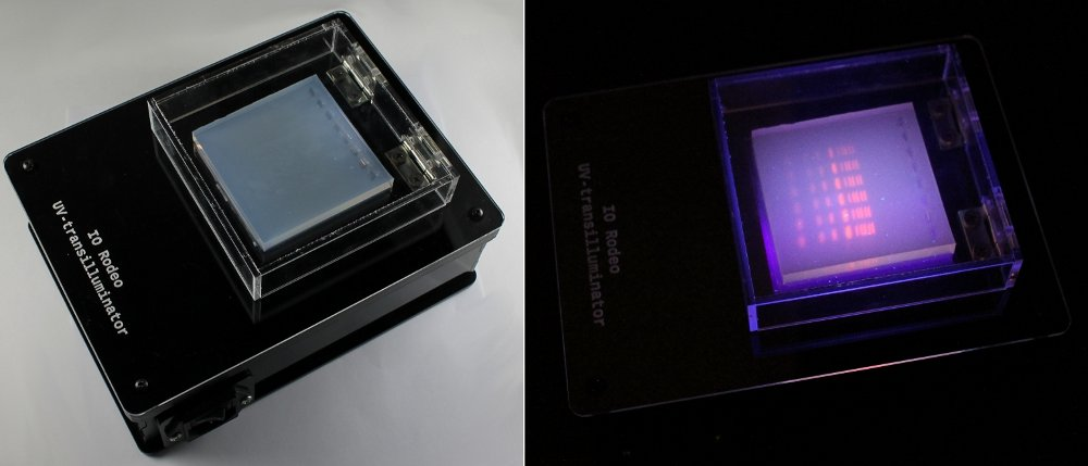 Viewing A Gel With The Uv Transilluminator Uv